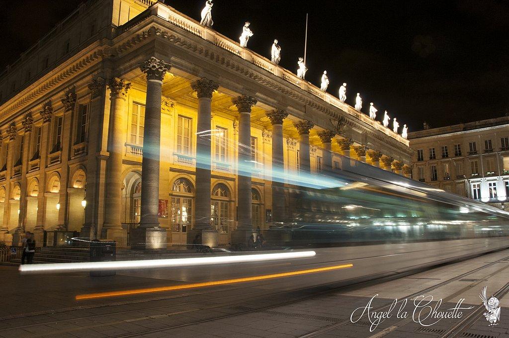 ALC-nuit-tram-gd-th.jpg